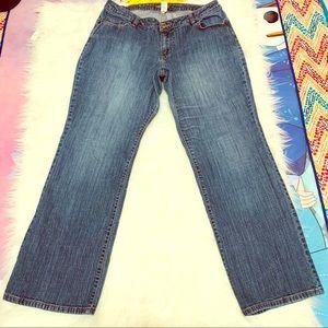 Venezia Women's Plus Size  Jeans Size 3